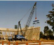 cranes111